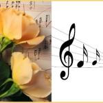 НАЧИНАЮЩИМ АРТИСТАМ: МУЗЫКАЛЬНОЕ ЗАНЯТИЕ «ВЕСЕЛЫЕ НОТКИ»