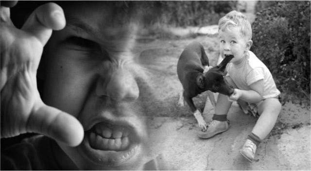 Почему дети кусаются в детском саду и нужен ли детям детский сад